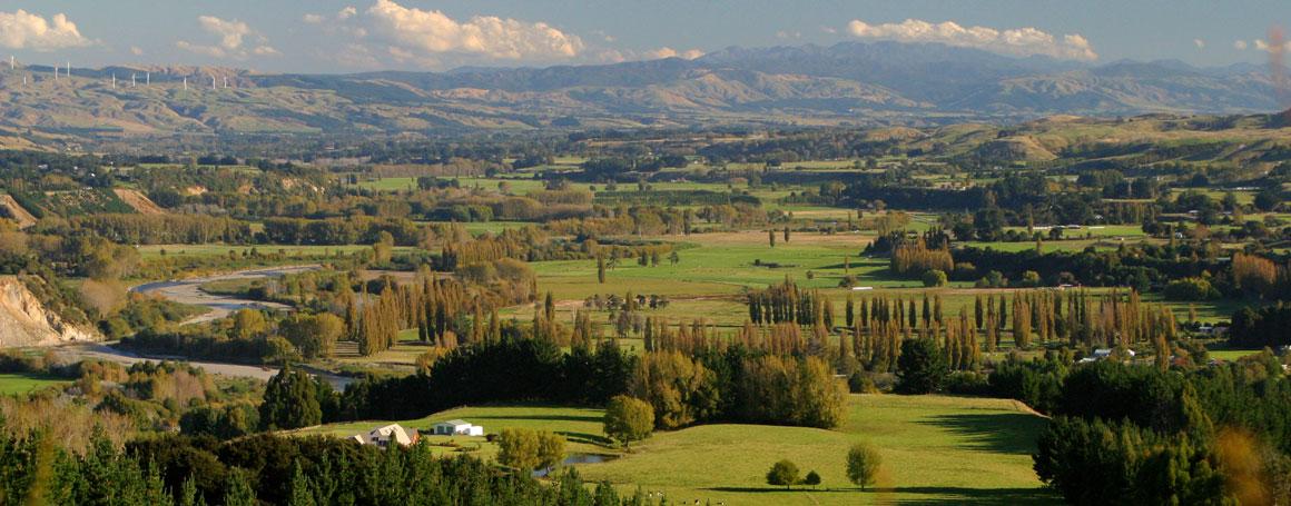 Landschaft in Manawatu