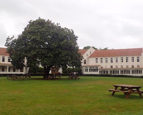 St Peters Cambridge 5