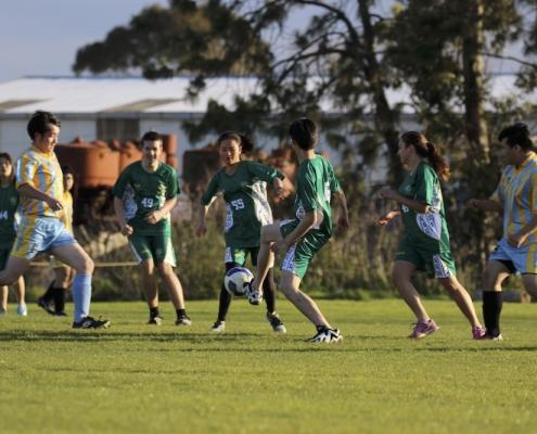 Western Springs College 27: Soccer